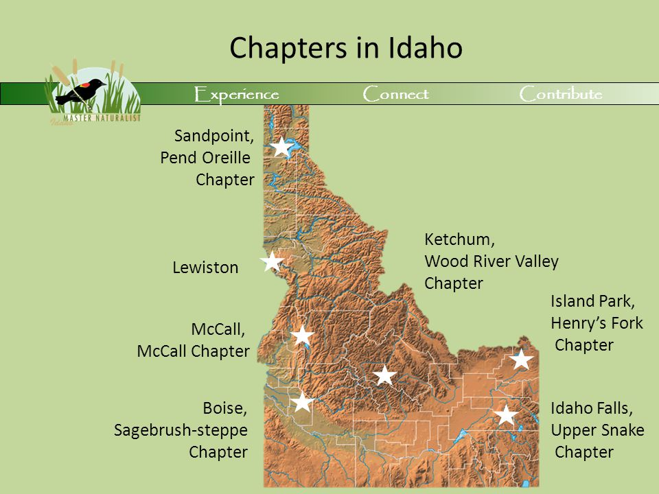 Chapters in Idaho Experience Connect Contribute Island Park, Henry's Fork Chapter Idaho Falls, Upper Snake Chapter Ketchum, Wood River Valley Chapter Boise, Sagebrush-steppe Chapter McCall, McCall Chapter Sandpoint, Pend Oreille Chapter Lewiston