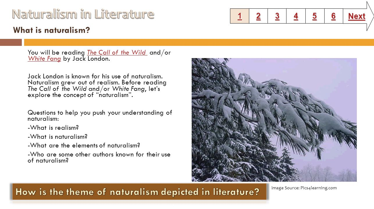 What is naturalism.