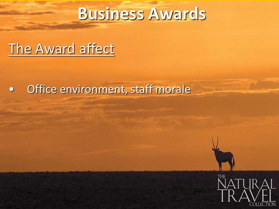 Office environment, staff moraleOffice environment, staff morale Business Awards The Award affect