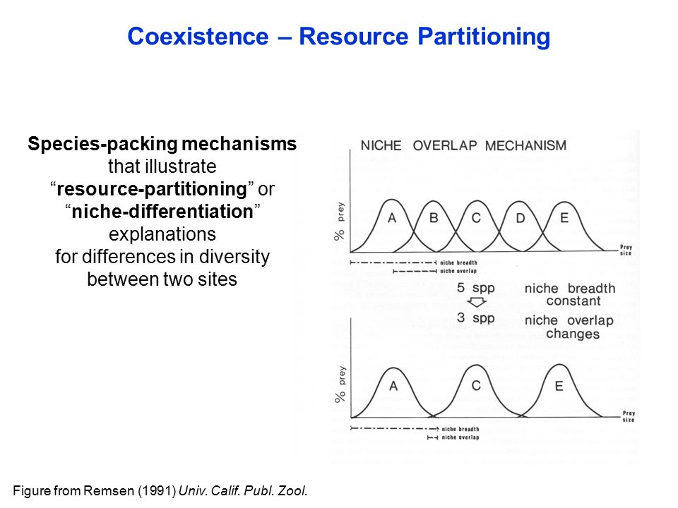 Coexistence – Resource Partitioning Species-packing mechanisms that illustrate resource-partitioning or niche-differentiation explanations for differences in diversity between two sites Figure from Remsen (1991) Univ.