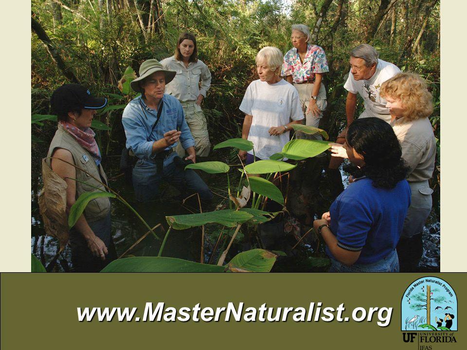 www.MasterNaturalist.org