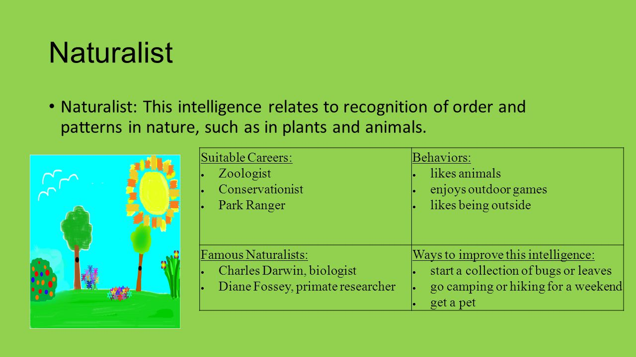Naturalist Naturalist: This intelligence relates to recognition of order and patterns in nature, such as in plants and animals. Suitable Careers:  Zo