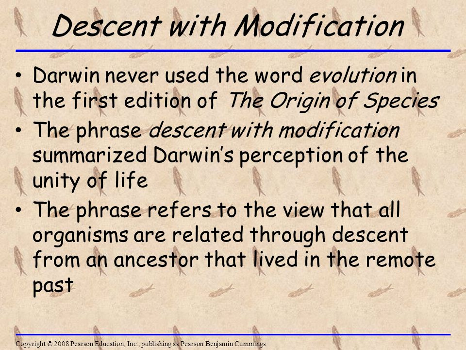 Descent with Modification Darwin never used the word evolution in the first edition of The Origin of Species The phrase descent with modification summarized Darwin's perception of the unity of life The phrase refers to the view that all organisms are related through descent from an ancestor that lived in the remote past Copyright © 2008 Pearson Education, Inc., publishing as Pearson Benjamin Cummings