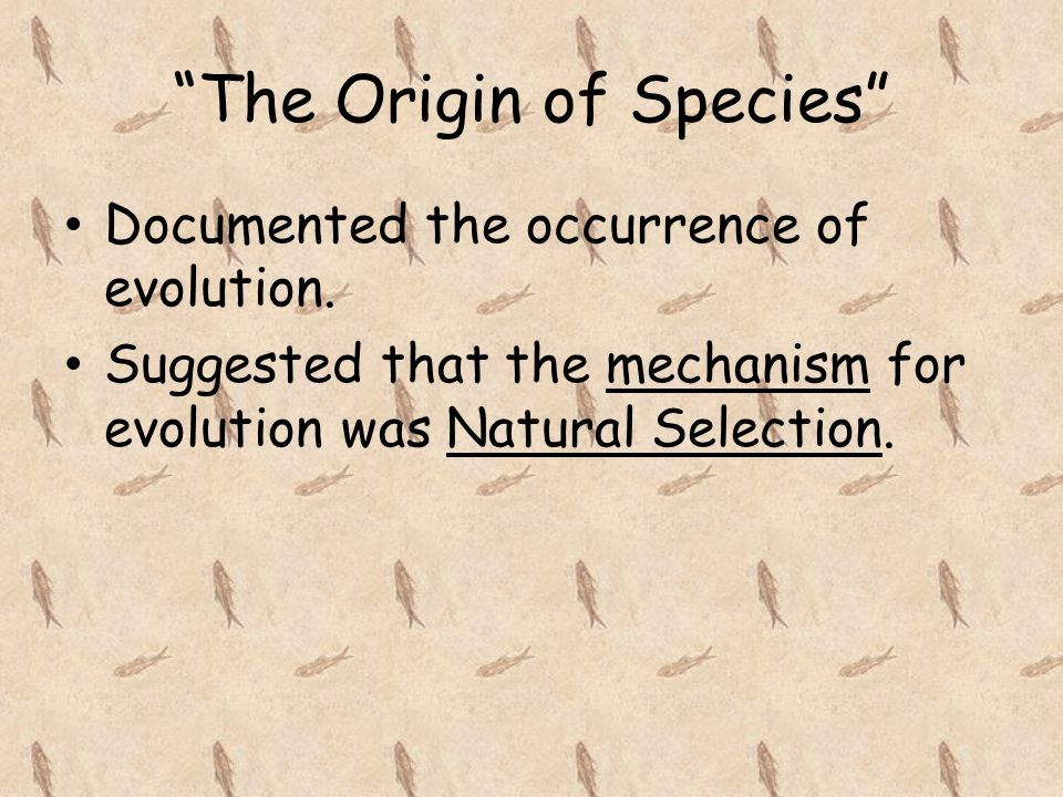 """The Origin of Species"" Documented the occurrence of evolution. Suggested that the mechanism for evolution was Natural Selection."