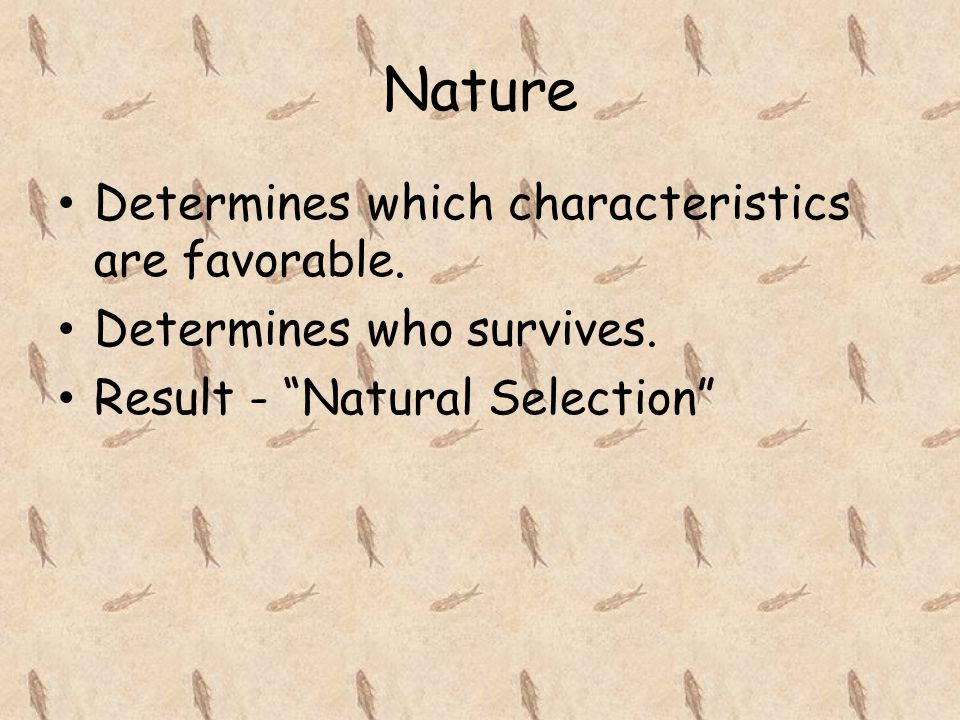 Nature Determines which characteristics are favorable.