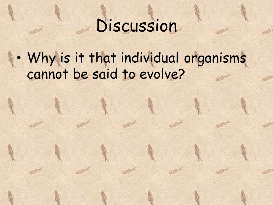 Discussion Why is it that individual organisms cannot be said to evolve?