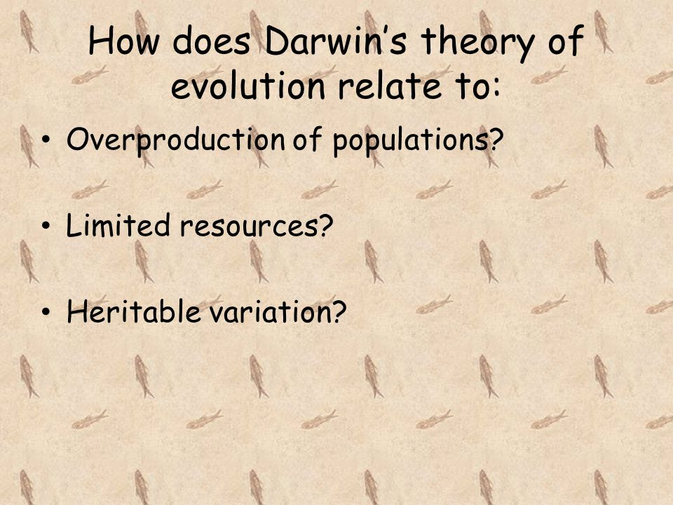 How does Darwin's theory of evolution relate to: Overproduction of populations.