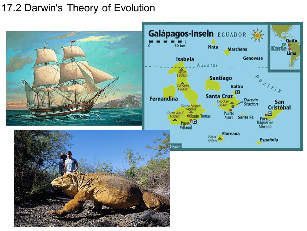 17.2 Darwin s Theory of Evolution