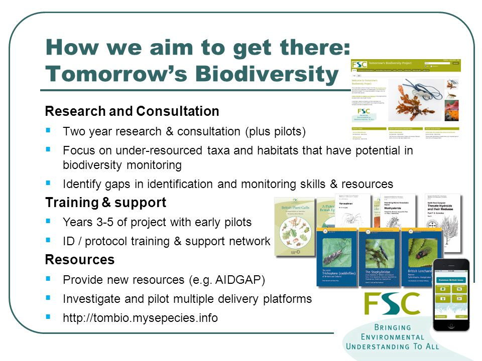 How we aim to get there: Tomorrow's Biodiversity Research and Consultation  Two year research & consultation (plus pilots)  Focus on under-resourced taxa and habitats that have potential in biodiversity monitoring  Identify gaps in identification and monitoring skills & resources Training & support  Years 3-5 of project with early pilots  ID / protocol training & support network Resources  Provide new resources (e.g.