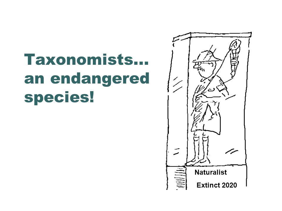Taxonomists... an endangered species! Naturalist Extinct 2020