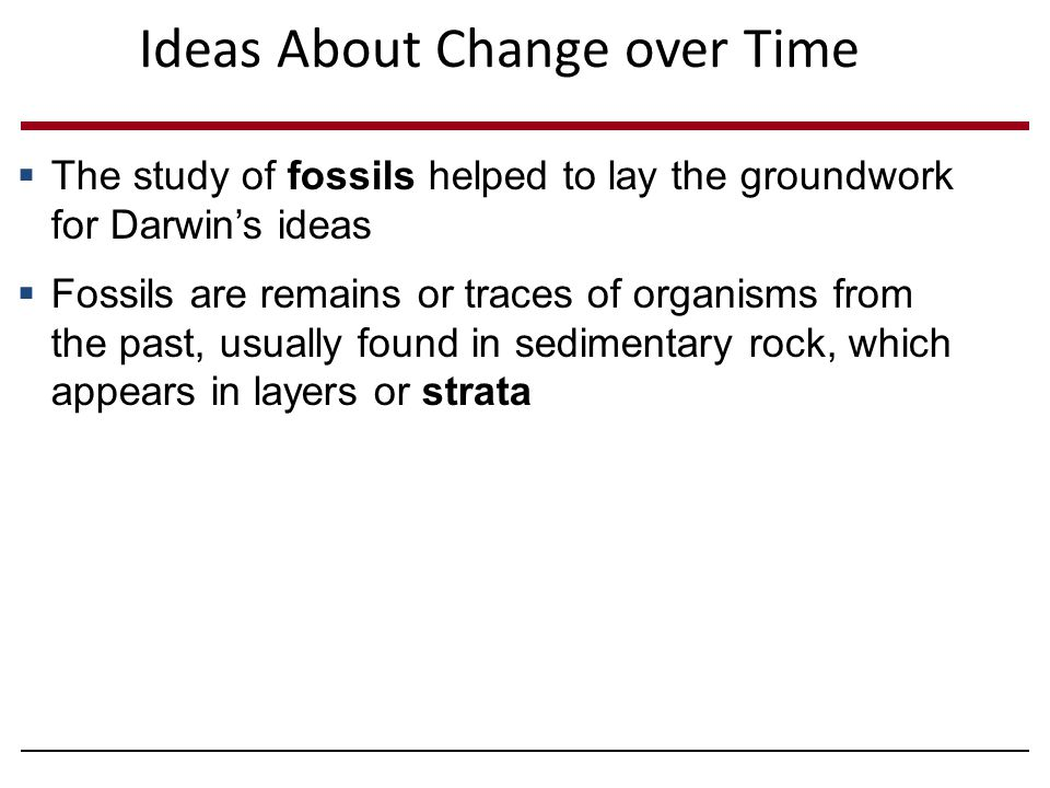 Ideas About Change over Time  The study of fossils helped to lay the groundwork for Darwin's ideas  Fossils are remains or traces of organisms from the past, usually found in sedimentary rock, which appears in layers or strata