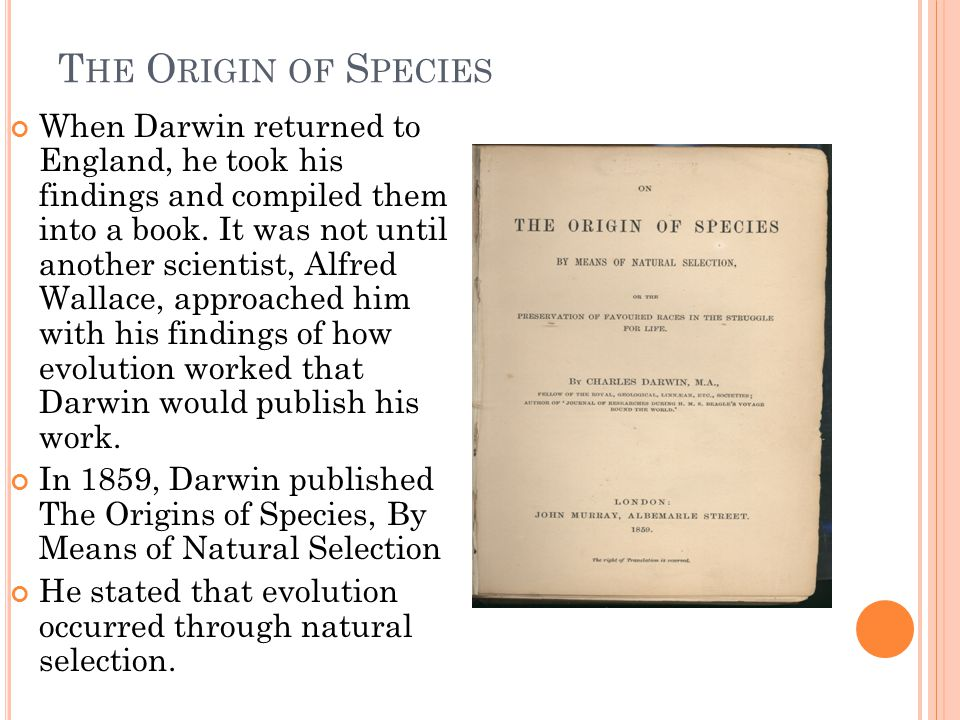 T HE O RIGIN OF S PECIES When Darwin returned to England, he took his findings and compiled them into a book. It was not until another scientist, Alfr