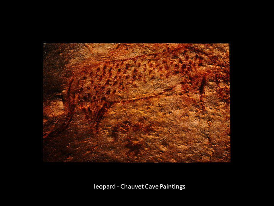 leopard - Chauvet Cave Paintings