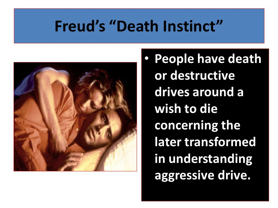 Freud's Death Instinct People have death or destructive drives around a wish to die concerning the later transformed in understanding aggressive drive.