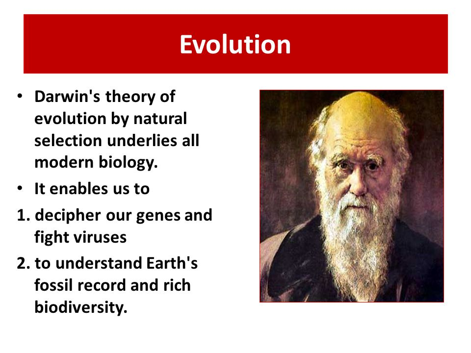 Evolution Darwin s theory of evolution by natural selection underlies all modern biology.