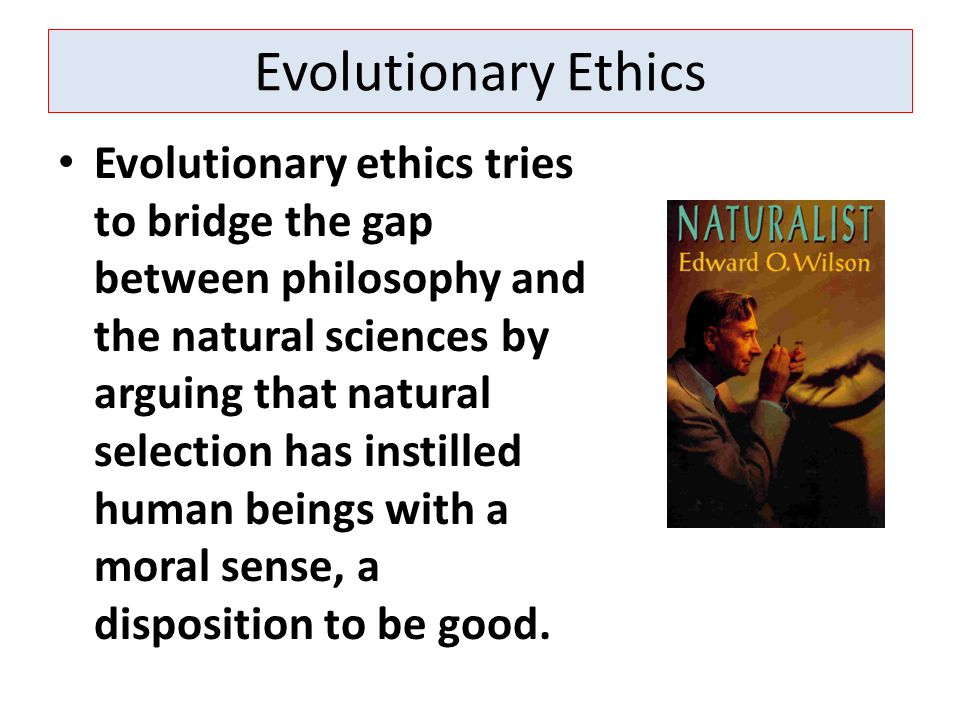 Evolutionary Ethics Evolutionary ethics tries to bridge the gap between philosophy and the natural sciences by arguing that natural selection has instilled human beings with a moral sense, a disposition to be good.
