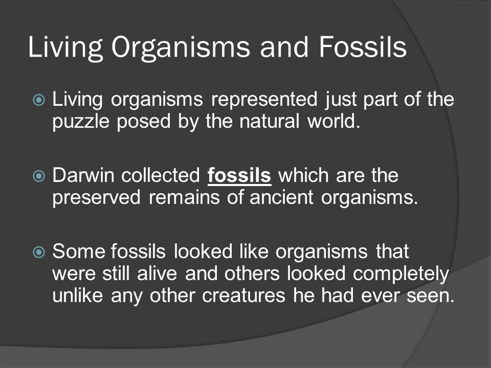 Living Organisms and Fossils  Living organisms represented just part of the puzzle posed by the natural world.  Darwin collected fossils which are t
