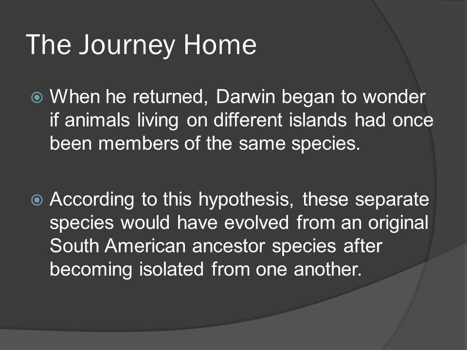 The Journey Home  When he returned, Darwin began to wonder if animals living on different islands had once been members of the same species.  Accord