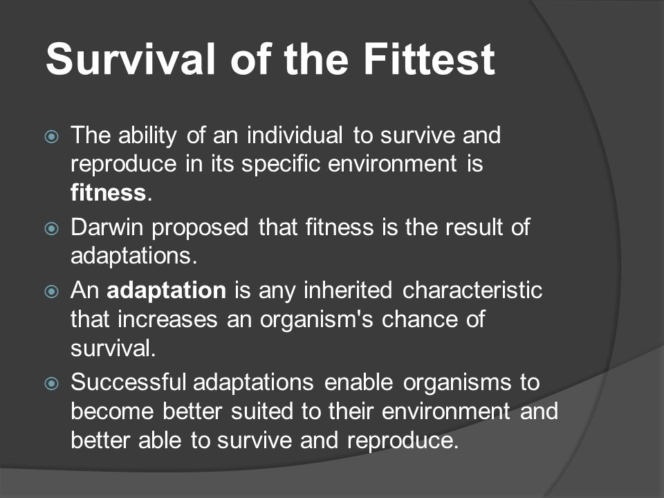 Survival of the Fittest  The ability of an individual to survive and reproduce in its specific environment is fitness.  Darwin proposed that fitness