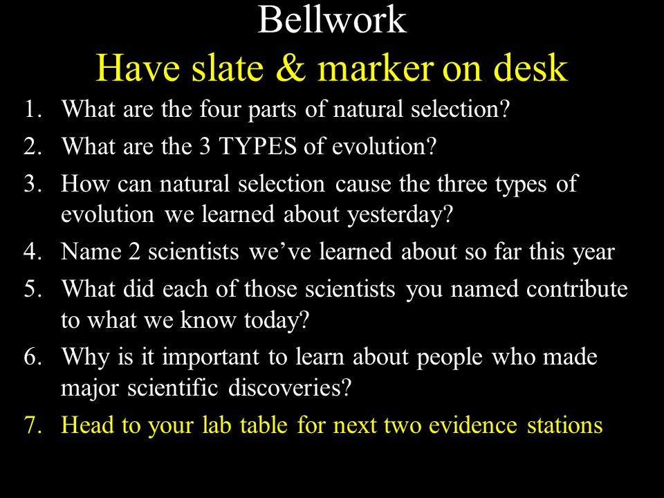 Bellwork Have slate & marker on desk 1.What are the four parts of natural selection.