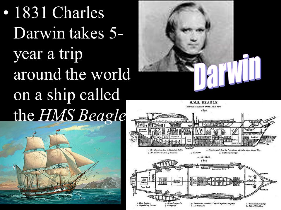 1831 Charles Darwin takes 5- year a trip around the world on a ship called the HMS Beagle.