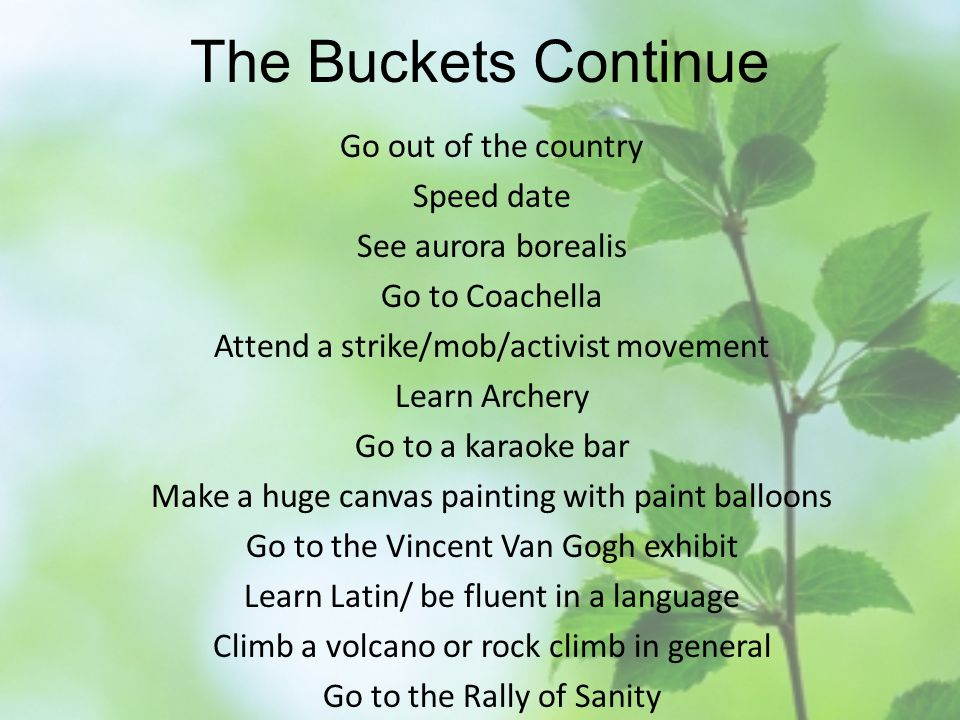The Buckets Continue Go out of the country Speed date See aurora borealis Go to Coachella Attend a strike/mob/activist movement Learn Archery Go to a karaoke bar Make a huge canvas painting with paint balloons Go to the Vincent Van Gogh exhibit Learn Latin/ be fluent in a language Climb a volcano or rock climb in general Go to the Rally of Sanity