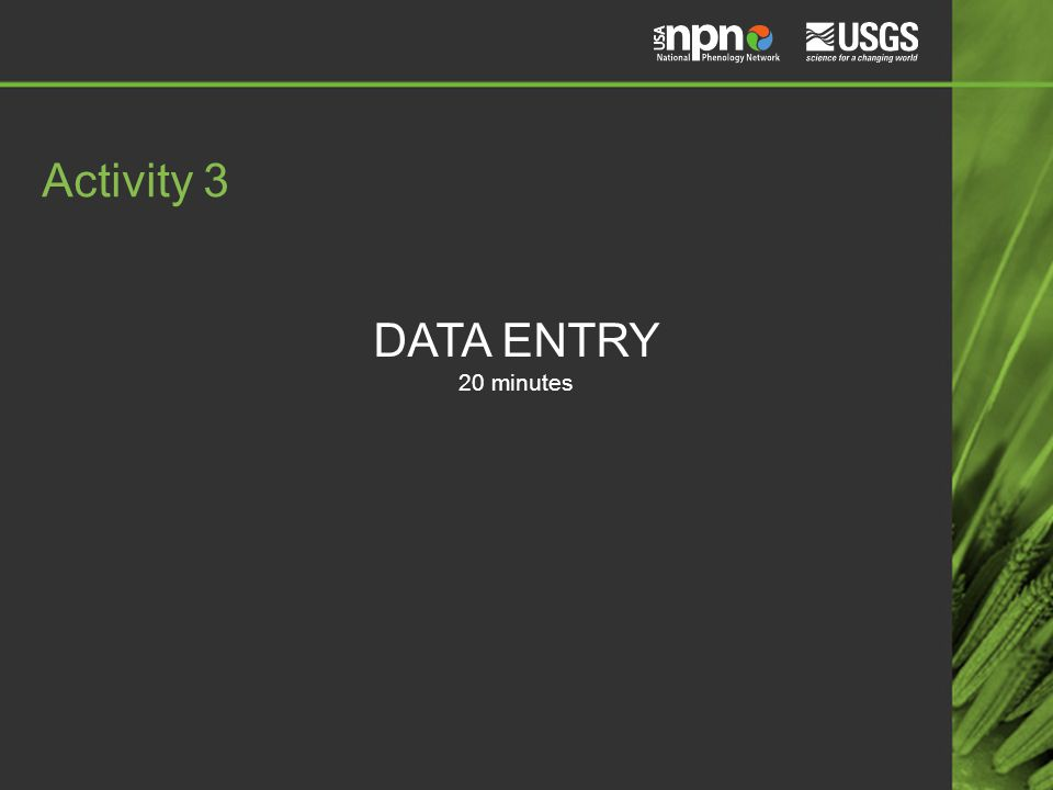DATA ENTRY 20 minutes Activity 3