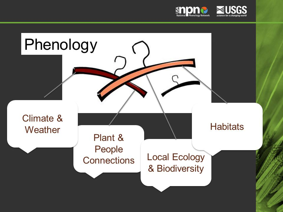 Phenology Plant & People Connections Local Ecology & Biodiversity Habitats Climate & Weather