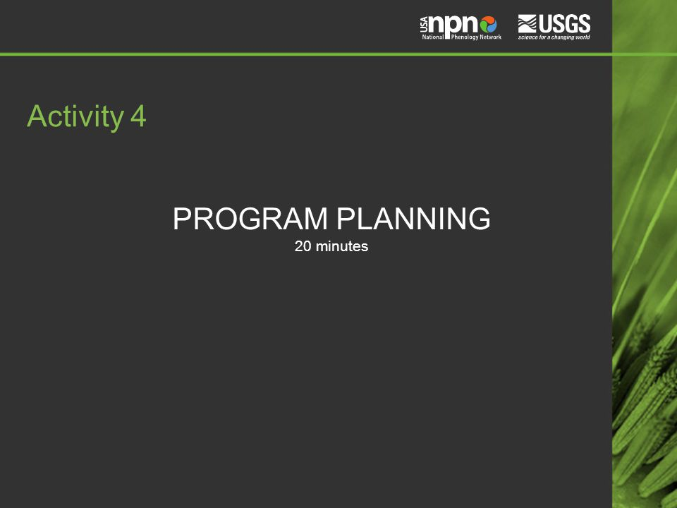 PROGRAM PLANNING 20 minutes Activity 4