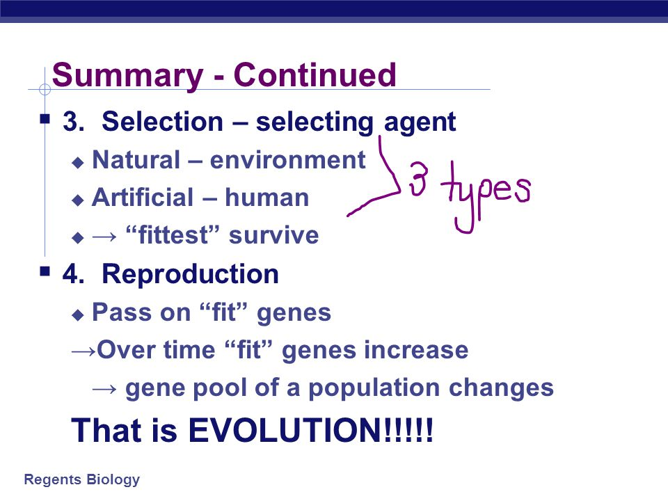 Regents Biology Summary – One more time  1. Overproduction –  WAY too many offspring are produced  2. Variation –  3 sources -  Adaptations – DO