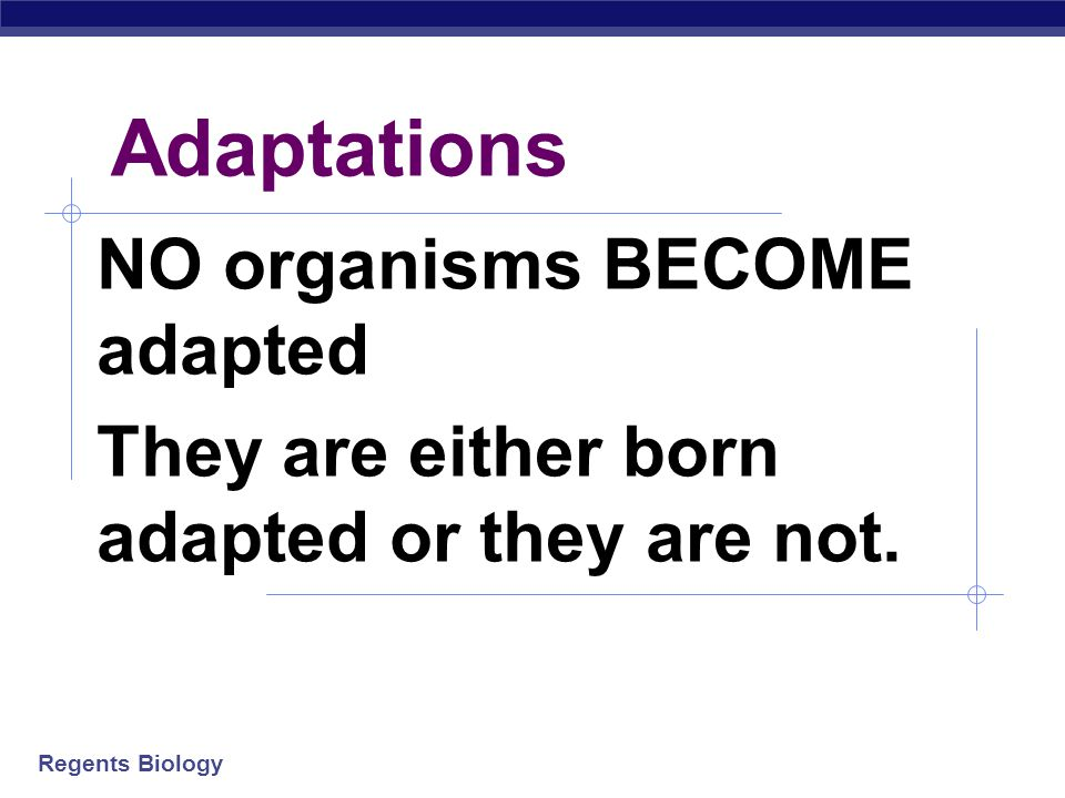 Regents Biology Adaptations NO organisms BECOME adapted They are either born adapted or they are not.