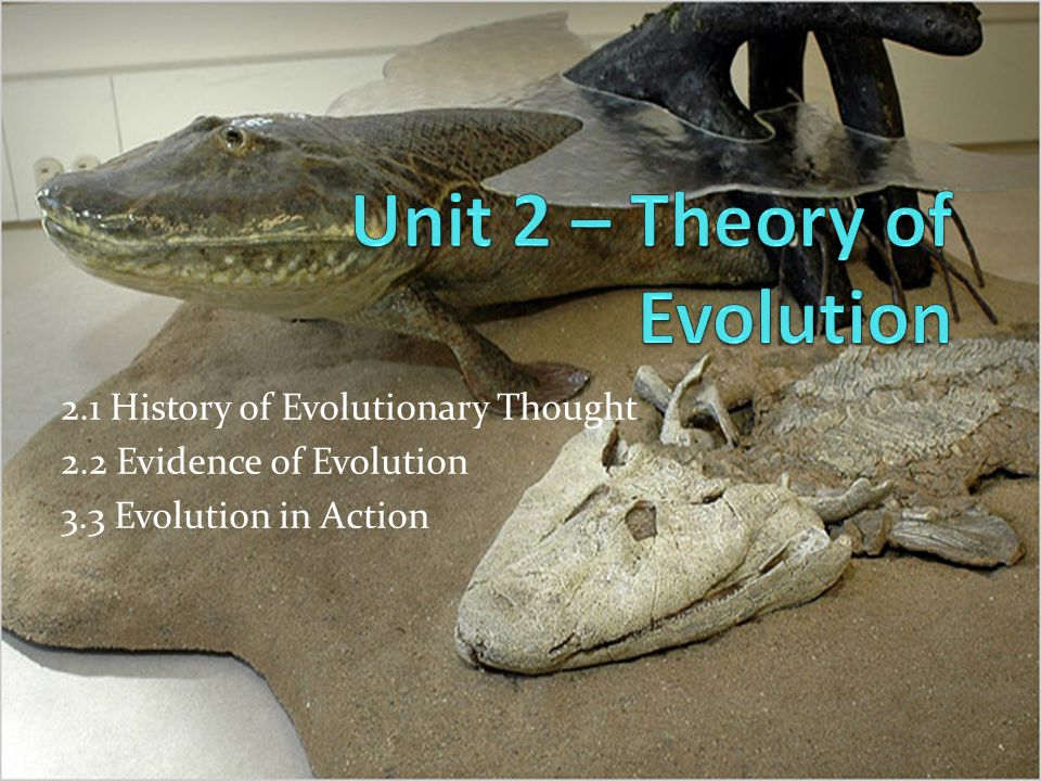 2.1 History of Evolutionary Thought 2.2 Evidence of Evolution 3.3 Evolution in Action