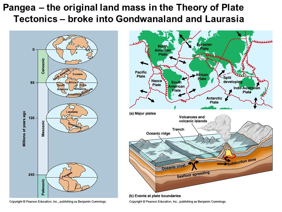 Sea level Sedimentary rocks form in horizontal layers.