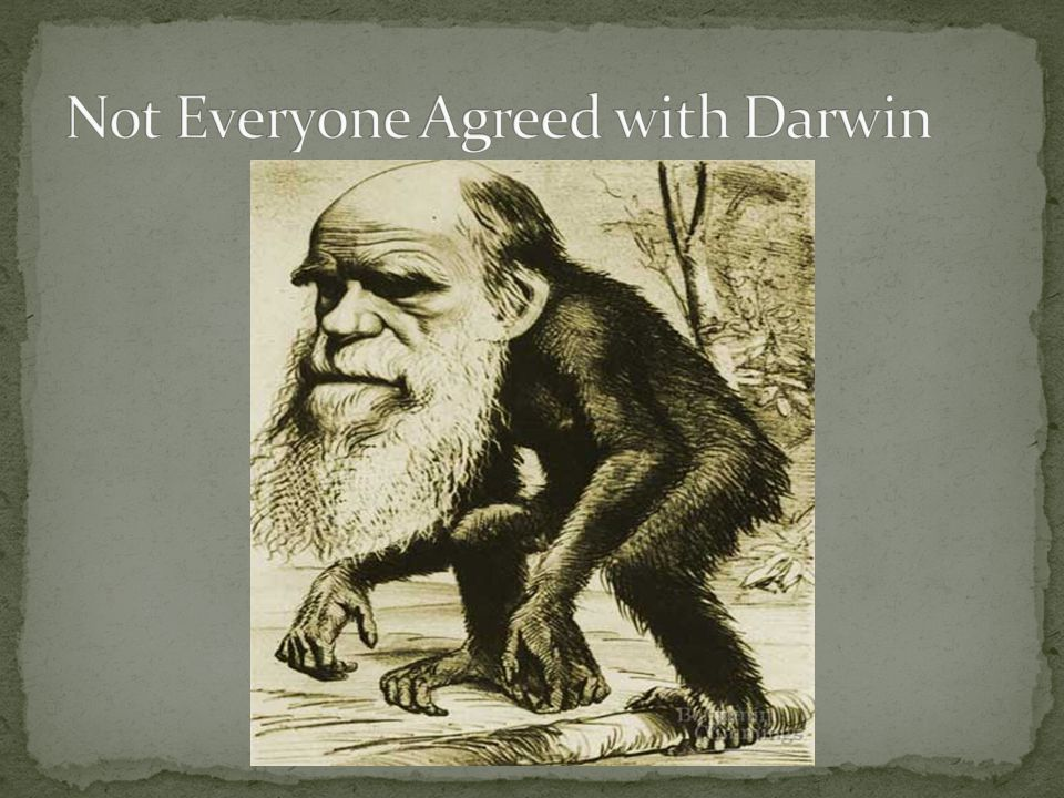 Darwin pointed out variation in the members of each species.