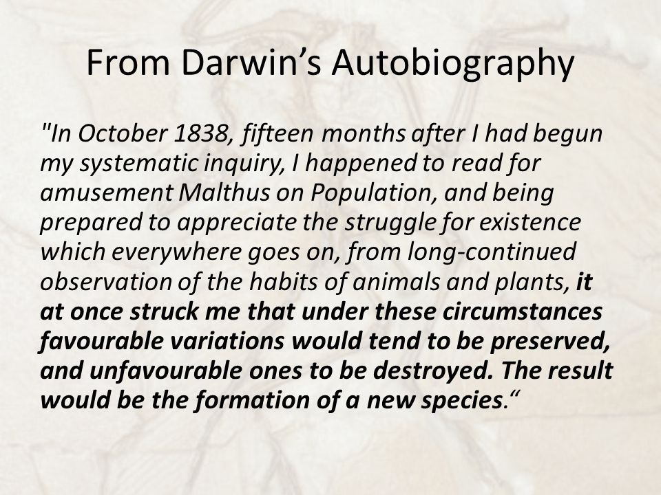 From Darwin's Autobiography In October 1838, fifteen months after I had begun my systematic inquiry, I happened to read for amusement Malthus on Population, and being prepared to appreciate the struggle for existence which everywhere goes on, from long-continued observation of the habits of animals and plants, it at once struck me that under these circumstances favourable variations would tend to be preserved, and unfavourable ones to be destroyed.