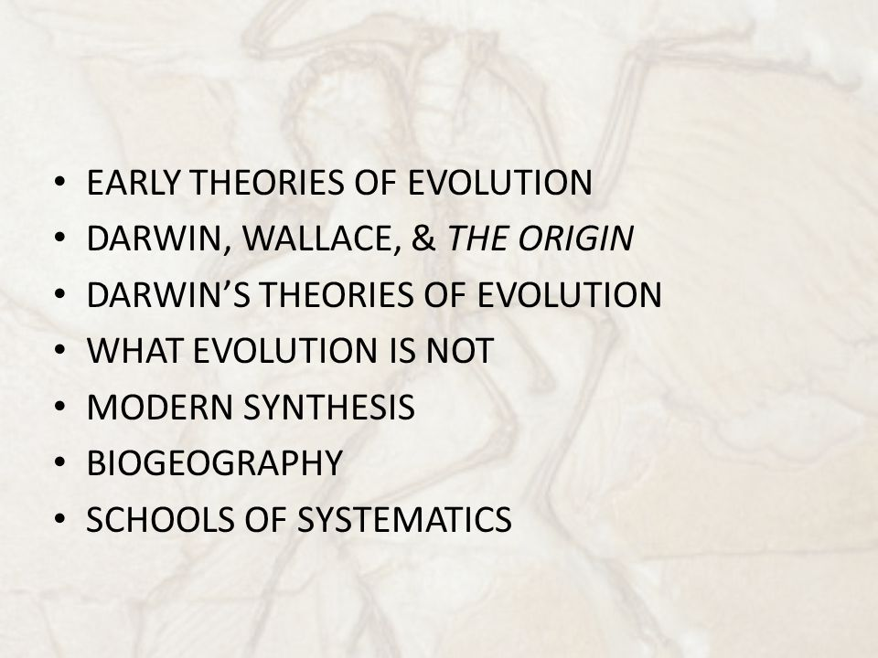 EARLY THEORIES OF EVOLUTION DARWIN, WALLACE, & THE ORIGIN DARWIN'S THEORIES OF EVOLUTION WHAT EVOLUTION IS NOT MODERN SYNTHESIS BIOGEOGRAPHY SCHOOLS O