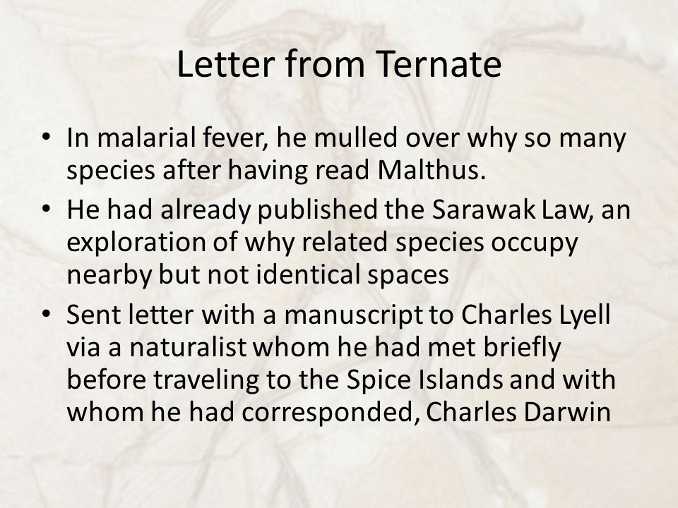 Letter from Ternate In malarial fever, he mulled over why so many species after having read Malthus. He had already published the Sarawak Law, an expl