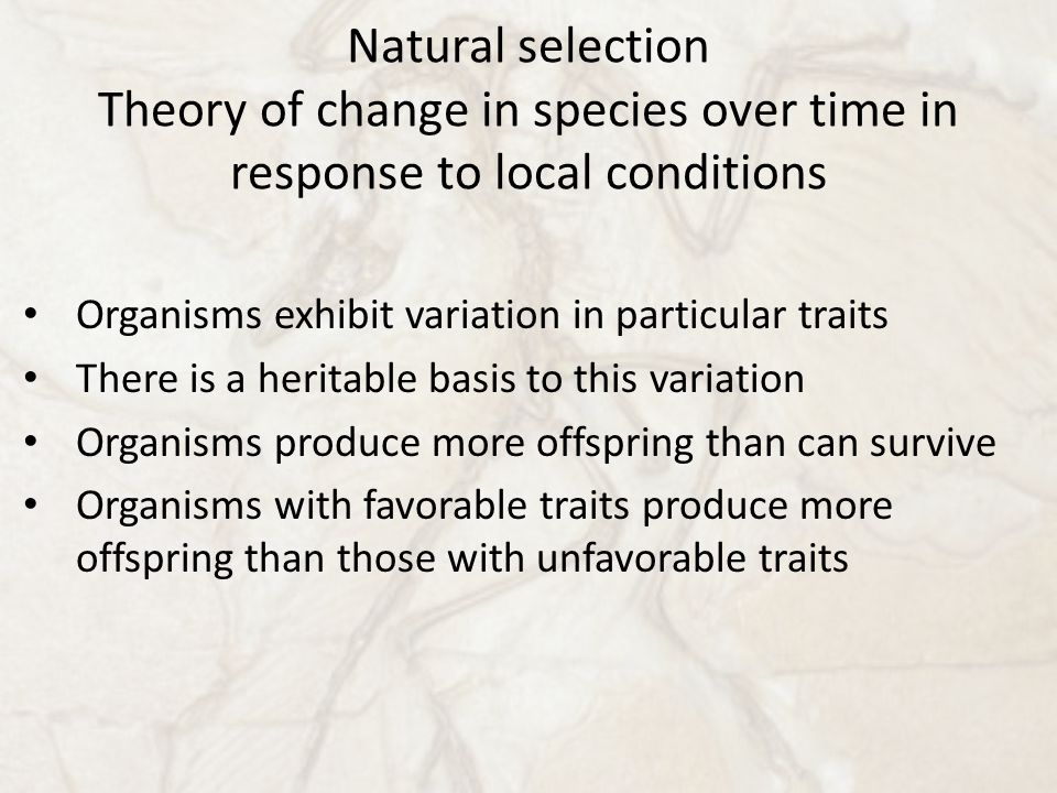 Natural selection Theory of change in species over time in response to local conditions Organisms exhibit variation in particular traits There is a heritable basis to this variation Organisms produce more offspring than can survive Organisms with favorable traits produce more offspring than those with unfavorable traits