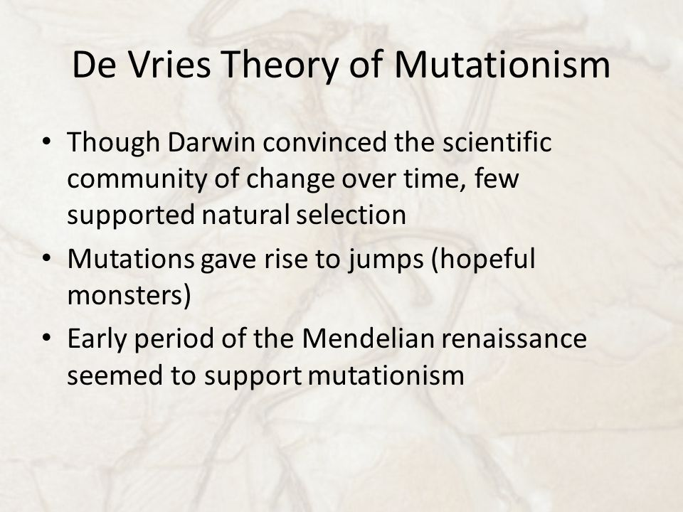 De Vries Theory of Mutationism Though Darwin convinced the scientific community of change over time, few supported natural selection Mutations gave rise to jumps (hopeful monsters) Early period of the Mendelian renaissance seemed to support mutationism