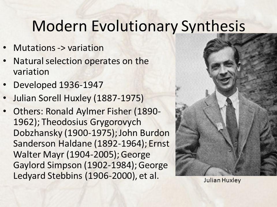 Modern Evolutionary Synthesis Mutations -> variation Natural selection operates on the variation Developed 1936-1947 Julian Sorell Huxley (1887-1975) Others: Ronald Aylmer Fisher (1890- 1962); Theodosius Grygorovych Dobzhansky (1900-1975); John Burdon Sanderson Haldane (1892-1964); Ernst Walter Mayr (1904-2005); George Gaylord Simpson (1902-1984); George Ledyard Stebbins (1906-2000), et al.