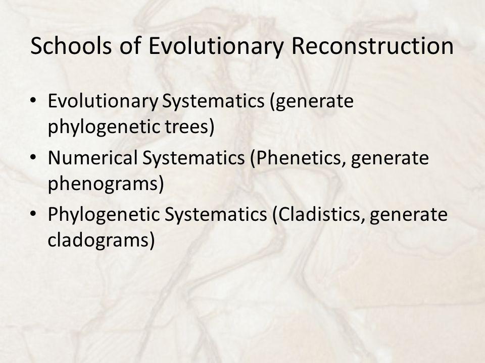 Schools of Evolutionary Reconstruction Evolutionary Systematics (generate phylogenetic trees) Numerical Systematics (Phenetics, generate phenograms) Phylogenetic Systematics (Cladistics, generate cladograms)