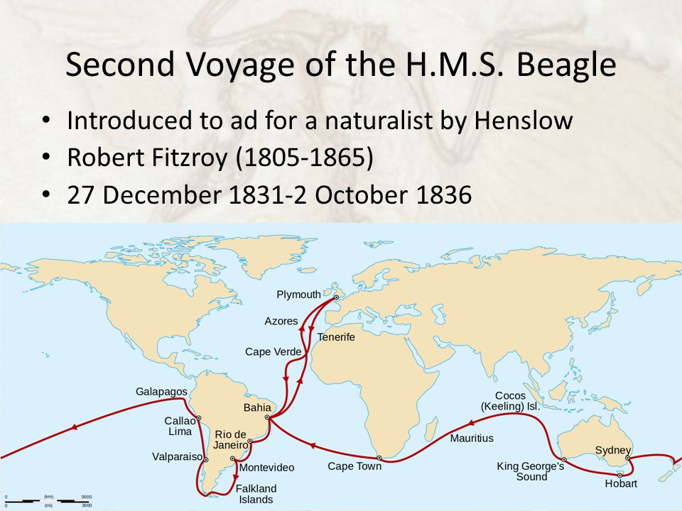 Second Voyage of the H.M.S.