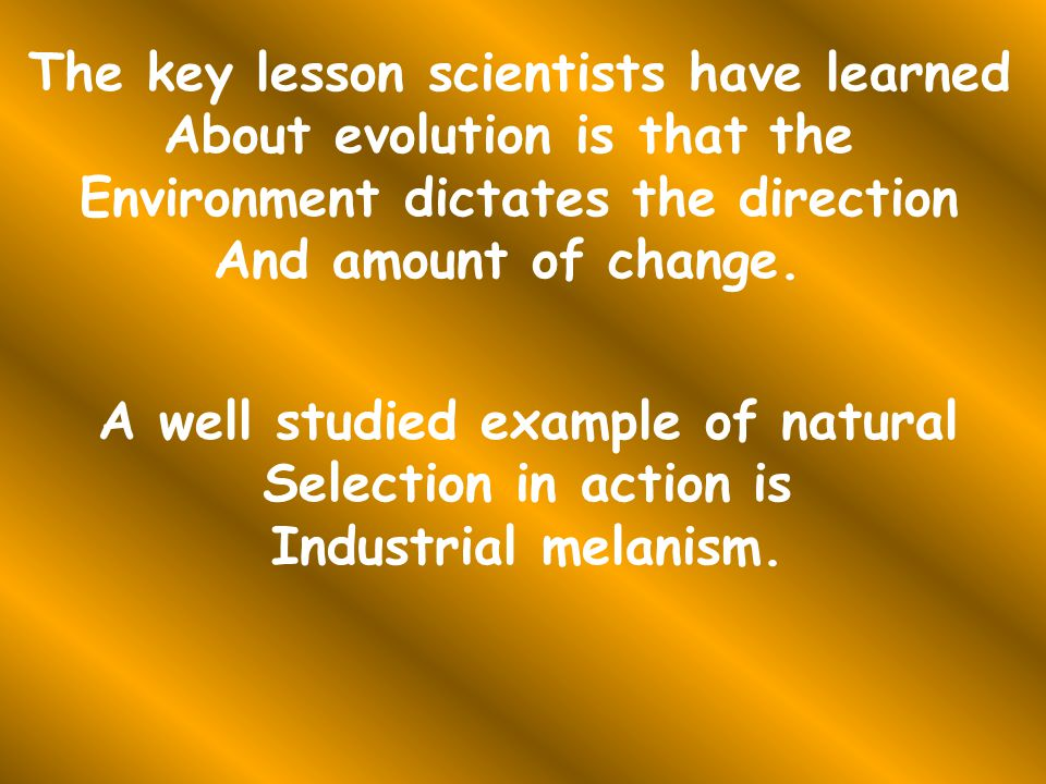 The key lesson scientists have learned About evolution is that the Environment dictates the direction And amount of change.