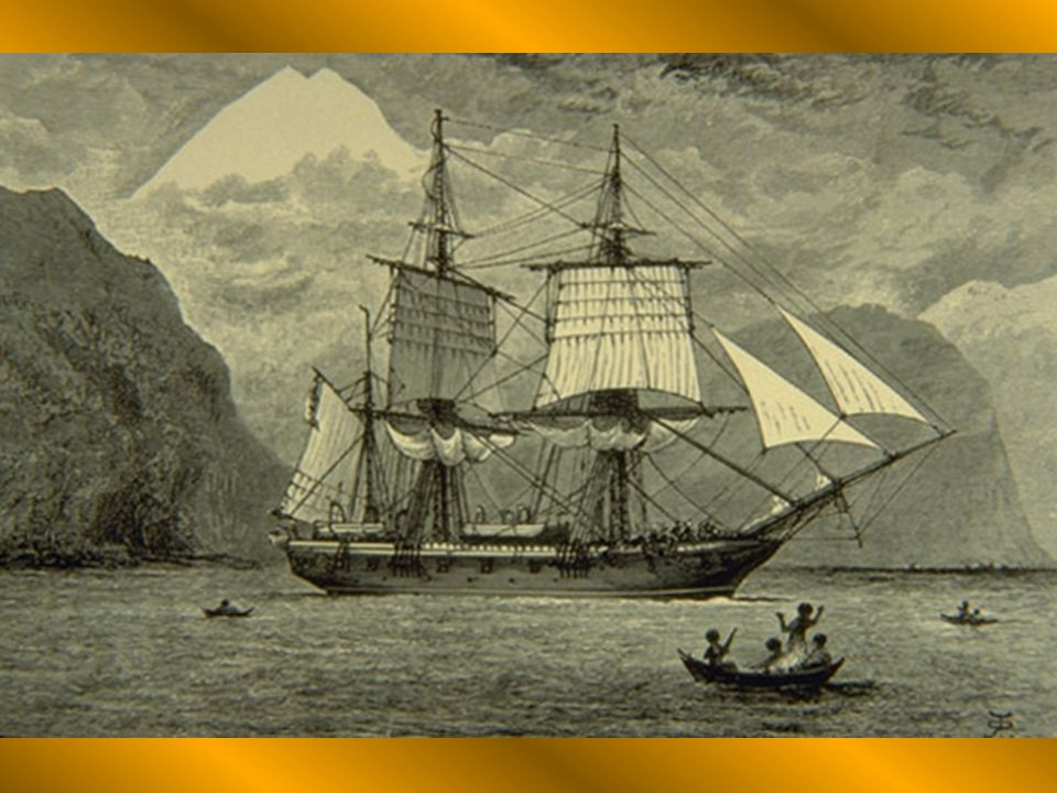 In 1831, Darwin became the Naturalist for the naval voyage of The HMS Beagle.
