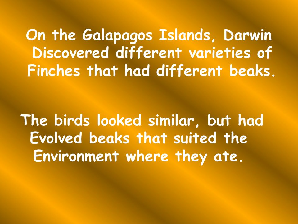 On the Galapagos Islands, Darwin Discovered different varieties of Finches that had different beaks.
