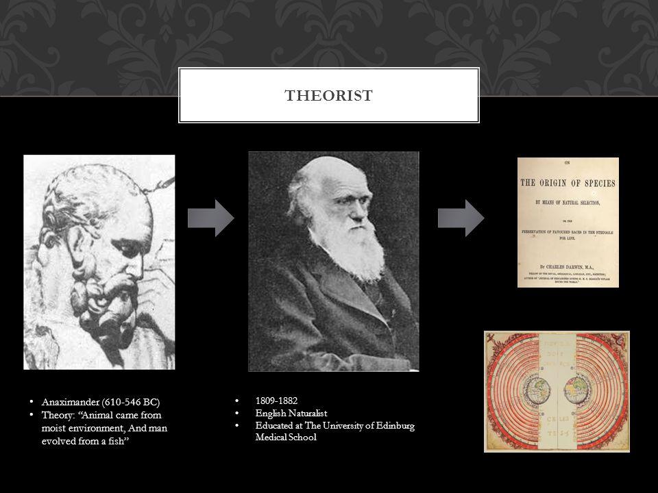 DARWIN'S IDEAS 1.