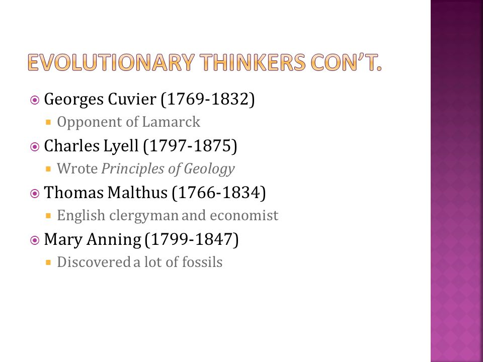  Georges Cuvier (1769-1832)  Opponent of Lamarck  Charles Lyell (1797-1875)  Wrote Principles of Geology  Thomas Malthus (1766-1834)  English cl