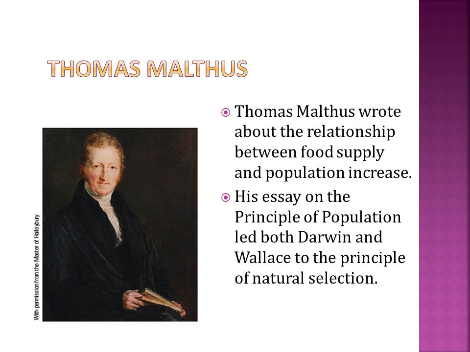  Thomas Malthus wrote about the relationship between food supply and population increase.  His essay on the Principle of Population led both Darwin