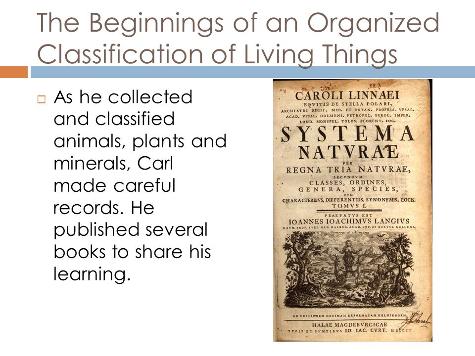 Classification of Animals  As a result of doing a great deal of observation and recording, Carl Linnaeus sorted his findings and created a way to organize plants and a way to organize animals for others to study and to discuss them.