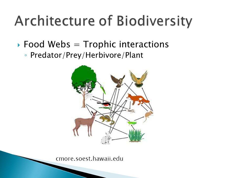  Food Webs = Trophic interactions ◦ Predator/Prey/Herbivore/Plant cmore.soest.hawaii.edu